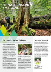 MeinAlpenStrom Magazin 3 2021 Cover
